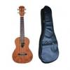 Guitar - Ukalele