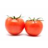 Cà Chua Hữu Cơ  (Organic Beef Tomato )