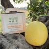 Dưa Lưới Hữu Cơ (ruột cam) (Organic Muskmelon )