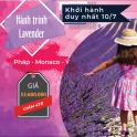 SP2.2-BBT-T7: Tour châu Âu ngắm hoa lavender (Pháp - Monaco - Ý)
