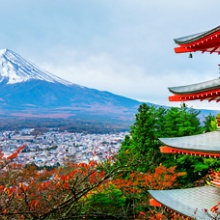 Tour du thuyền 5 sao khởi hành 15/07 khám phá Thượng Hải - Kumamoto - Fukuoka, Star Travel