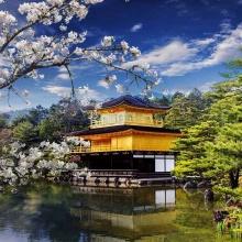 Tour Nhật Bản 5 ngày 5 đêm Vinared tour