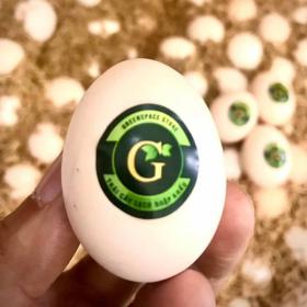 Trứng gà ác sạch GSS - 10 quả - Chỉ giao Hồ Chí Minh