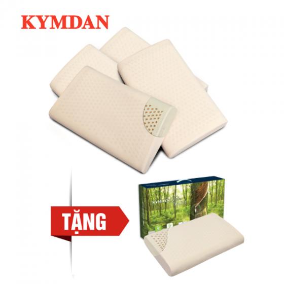 Combo 4 gối cao su thiên nhiên KYMDAN Pillow IYASHI 48 x 28 x 7 cm - Tặng 1 gối