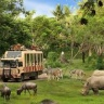 Tour Phú Quốc Safari Vinpearlland 5 sao Tết - Du Lịch Phong Cách Việt