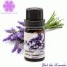 Tinh dầu oải hương - Essential Lavender Oil
