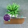 Rèm sáo gỗ TITA (Ngang 120cm x Cao 162cm)  mã TTSTW019 - Bản lá 50mm