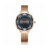 Đồng hồ nữ Julius Hàn Quốc dây thép JA-1111E đồng mặt xám