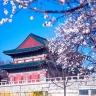 Tour Hàn Quốc: Hà Nội – Seoul – Everland – Nami 5 ngày - Lữ Hành Việt