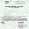 Bột hồng sâm nguyên chất 6 năm tuổi nhập khẩu 100% tại Hàn Quốc- Hộp 50 gr