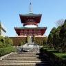 Nhật Bản cung đường vàng 5 ngày 5 đêm