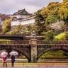 Nhật Bản ngắm hoa Tử Đằng 4 ngày 3 đêm