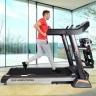 Máy chạy bộ điện đa năng Elip Armstrong