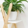Kệ sách trưng bày Blake gỗ tự nhiên  - Cozino