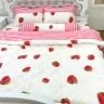 Bộ chăn ga gối cotton sợi bông Hàn Quốc Julia (bộ 5 món có chăn chần gòn) 248BG16