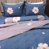 Bộ vỏ chăn ga gối 5 món cotton satin Hàn Julia 405BM16