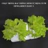 Bộ chậu trồng rau thông minh tự động tưới Minigarden Basic S phong cách Châu Âu sử dụng trên 10 năm