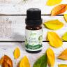 Tinh dầu cam hương Leviter 10ml