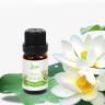 Tinh dầu hoa sen trắng Leviter 10ml