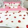 Bộ chăn ga gối 5 món cotton Hàn Julia 249BG18