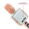 Micro kèm loakaraoke Bluetooth JVJ YS-91