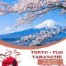 5N4D - Tokyo - VN - Sakura