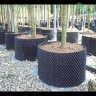 Bầu nhựa ươm rễ cây thông minh cao 50cm, dài 5m