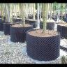 Bầu nhựa ươm rễ cây thông minh cao 80cm, dài 5m