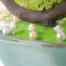Bông tai Ngọc trai Thiên nhiên - Kiểu nụ Phong cách - KissPearl (6ly) - CTJ6706