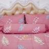 Bộ drap gối lá hồng cotton Pierre Cardin