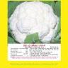 Hạt giống súp lơ trắng F1 NP 41 1GR