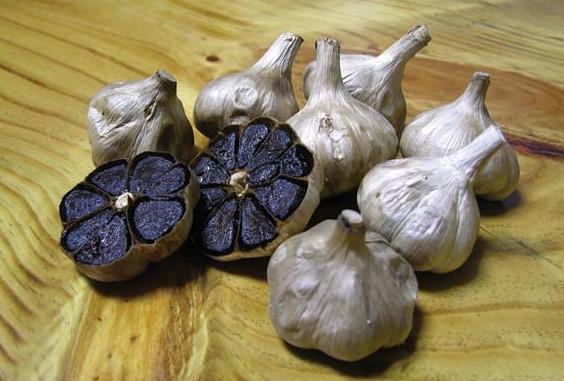 Máy làm tỏi đen ceramic Mishio (Trắng)