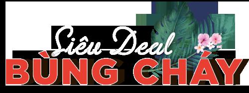 Top Deal giá sốc