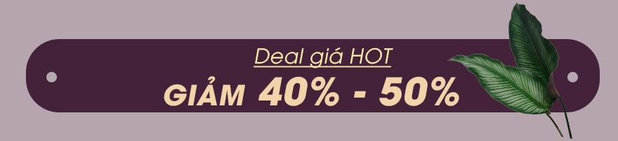 GIAM 40% - 50%