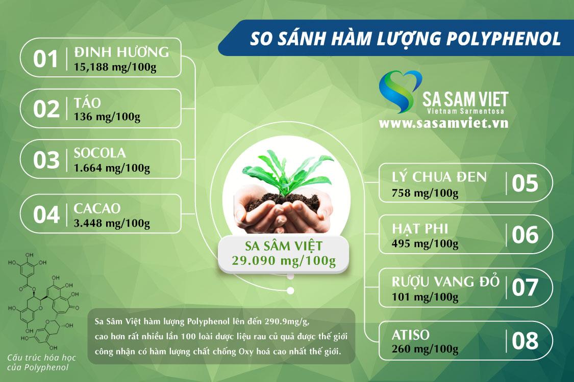 Sâm giải độc gan LIVERSAM - Sa Sâm Việt