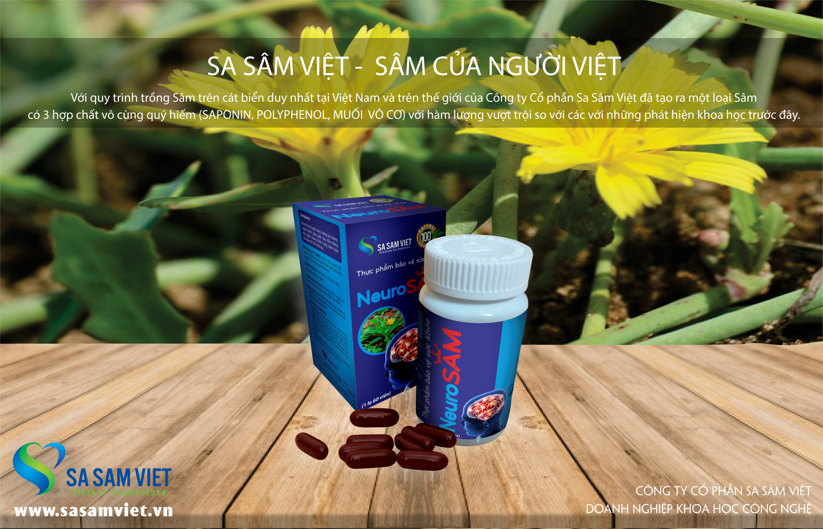 Sâm hoạt duyết dưỡng não NeuroSAM - Sa Sâm Việt