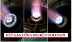 Bếp gas công nghiệp Goldsun GS-CN5A2