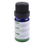 Combo tinh dầu sả chanh + bạc hà + tràm (10ml / Chai) - Lorganic