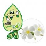 Lá thơm nụ cười may mắn L&D Mister Nature Jasmine