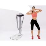 Máy rung bụng đứng Perfect Fitness BYS 101