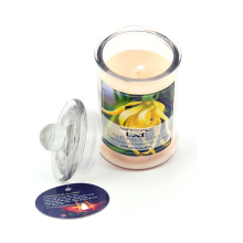 Nến thơm cao cấp tinh dầu ngọc lan - Aroma Candles Ylang Jar