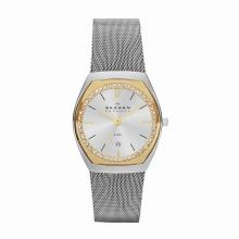 Đồng hồ Skagen SKW2050