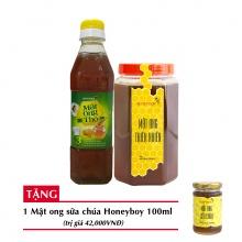 Combo mật ong thiên nhiên Honeyboy 1kg + Mật ong thô Honeyboy 400ml + Tặng mật ong sữa chúa Honeyboy 100ml
