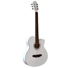 Đàn guitar acoustic Vines VA4010WH