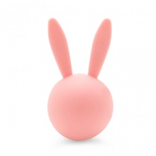 Sáp thơm ghim máy lạnh Carmate Sai Angel Rabbit Air DSG64 Pure Fruity 4g