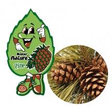 Lá thơm nụ cười may mắn LD Mister Nature Wild Pine