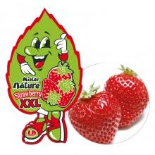 Lá thơm nụ cười may mắn lớn LD XXL Mister Nature Strawberry