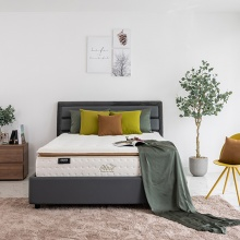 Nệm lò xo túi Olive Luxury Havas 100x200x36 cm