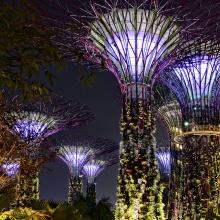 Tour Malaysia Singapore 5 ngày 4 đêm Vinared Tour