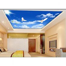 Tranh dán trần nhà 3D bầu trời 3 TN33